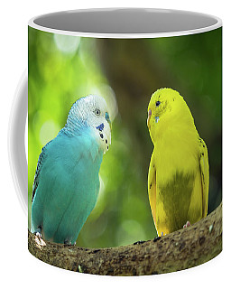 Budgie Buddies Coffee Mug