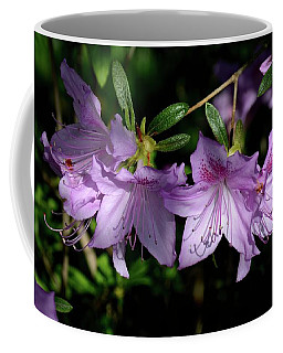 Coffee Mug featuring the photograph Buds And Blooms by Angie Tirado