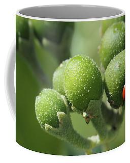 Buds And Bugs Coffee Mug