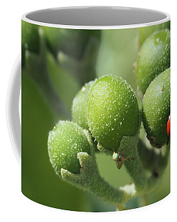 Buds And Bugs Coffee Mug
