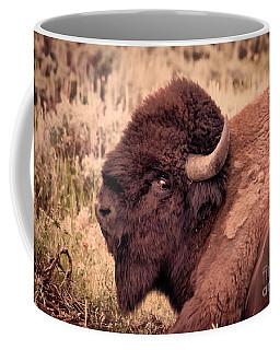 Coffee Mug featuring the photograph Buffalo Eye On You by Janice Rae Pariza