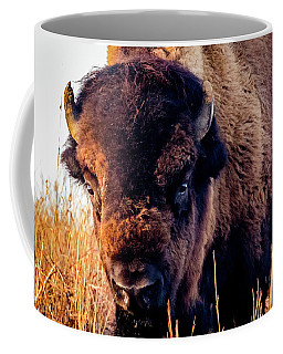 Coffee Mug featuring the photograph Buffalo Face by Jay Stockhaus