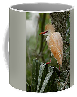 Buffy - The Cattle Egret Coffee Mug