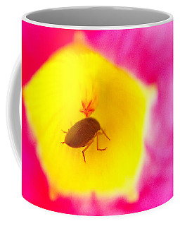 Coffee Mug featuring the photograph Bug In Pink And Yellow Flower  by Ben and Raisa Gertsberg