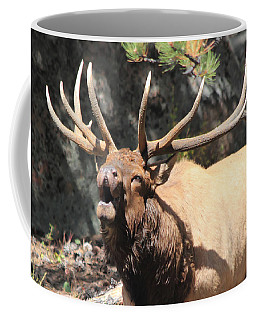 Coffee Mug featuring the photograph Bugling Bull by Shane Bechler