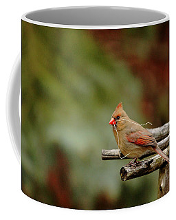 Coffee Mug featuring the photograph Building A Home by Debbie Oppermann