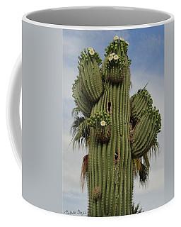 Building A Nest Coffee Mug