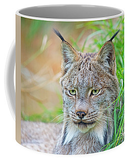 Coffee Mug featuring the photograph Built In Hearing Aid.. by Nina Stavlund