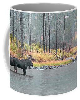 Bull And Cow Moose In East Rosebud Lake Montana Coffee Mug