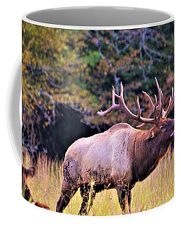 Bull Calling His Herd Coffee Mug