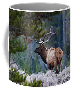Bull Elk In Forest Coffee Mug