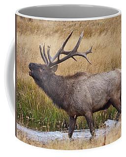 Bull Elk In Yellowstone Coffee Mug