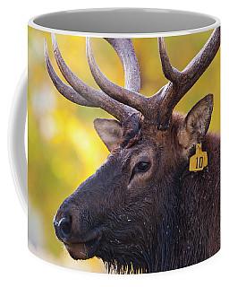 Bull Elk Number 10 Coffee Mug