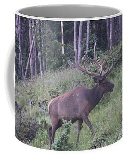 Bull Elk Rocky Mountain Np Co Coffee Mug
