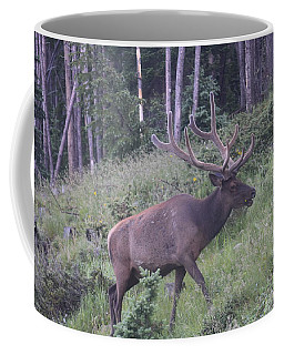 Bull Elk Rocky Mountain Np Co Coffee Mug
