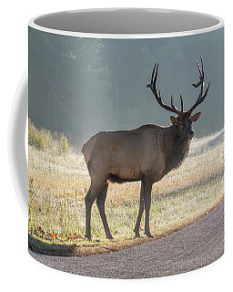 Bull Elk Watching Coffee Mug