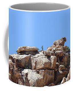 Bull From Joshua Tree Coffee Mug