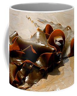 Bull Kelp Coffee Mug by Lexa Harpell