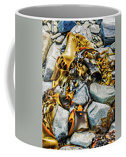 Bull Kelp On Blue Rocks Coffee Mug by Lexa Harpell