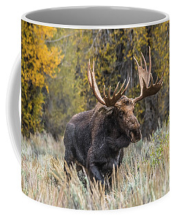 Bull Moose On The Run Coffee Mug by Yeates Photography