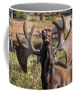 Bull Moose Takes A Big Whiff Coffee Mug