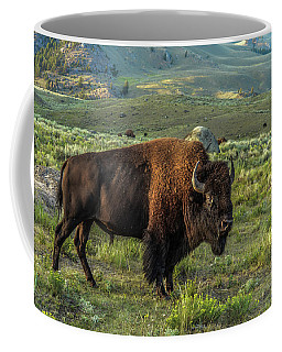 Bull Of The Bison Herd Coffee Mug by Yeates Photography