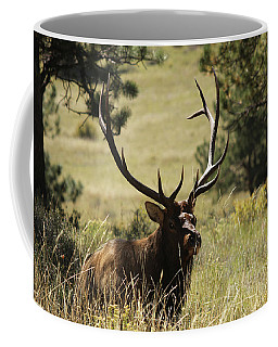 Bullelk1 Coffee Mug