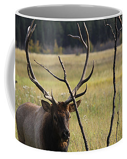 Bullelk2 Coffee Mug
