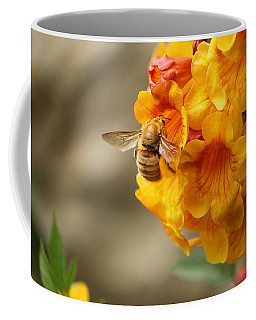 Coffee Mug featuring the photograph Bumble Bee Fiesta by Amy Gallagher