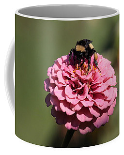 Bumble Bee On Zinnia 2649 Coffee Mug
