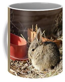 Bunny In The Garden Coffee Mug