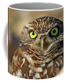 Burrowing Owl Portrait Coffee Mug