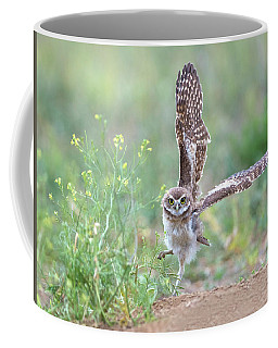 Burrowing Owl Spies Grasshopper Coffee Mug