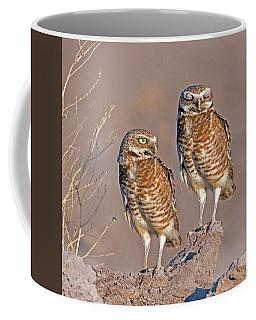 Burrowing Owls At Salton Sea Coffee Mug