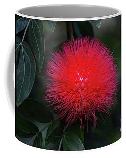 Burst Of Red Coffee Mug by Cindy Manero