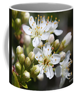 Burst Of Spring Coffee Mug