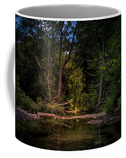Busiek State Forest Coffee Mug