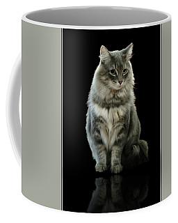 Bustopher Jones Coffee Mug