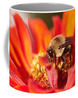 Busy Bee II Coffee Mug