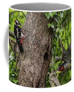 Busy Parents. Great Spotted Woodpecker Pair Coffee Mug