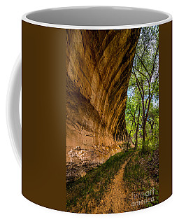 Butler Wash Wave Formation - Blanding - Utah Coffee Mug by Gary Whitton
