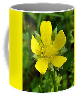 Buttercup Coffee Mug