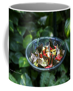 Butterflies Feeding Coffee Mug
