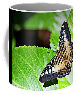 Butterfly 13a Coffee Mug