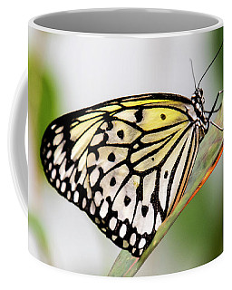 Butterfly #1945 Coffee Mug