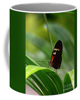 Butterfly #1946 Coffee Mug