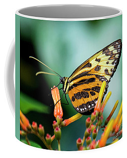 Butterfly #1957 Coffee Mug