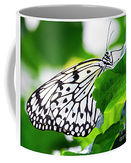 Butterfly #2025 Coffee Mug