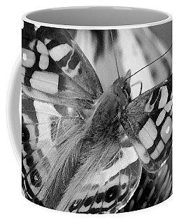 Butterfly American Lady Coffee Mug