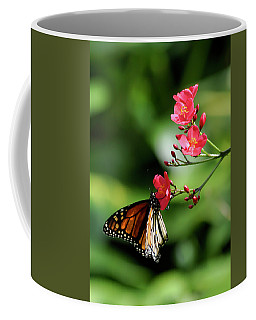 Butterfly And Blossom Coffee Mug